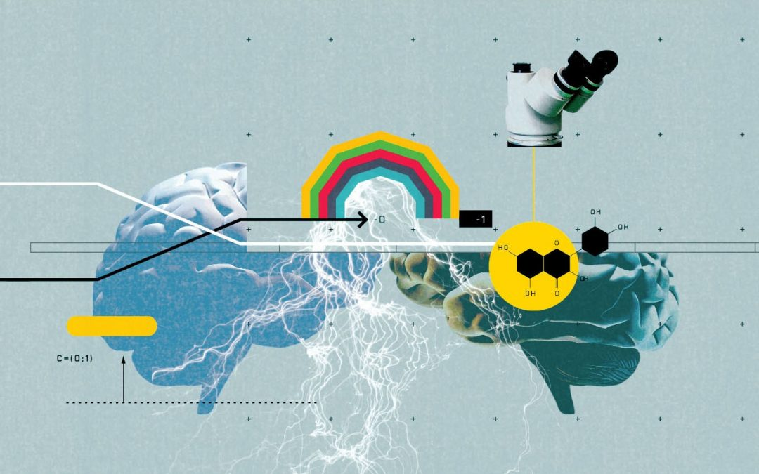 HBR Article by Paul Zak: HOW OUR BRAINS DECIDE WHEN TO TRUST